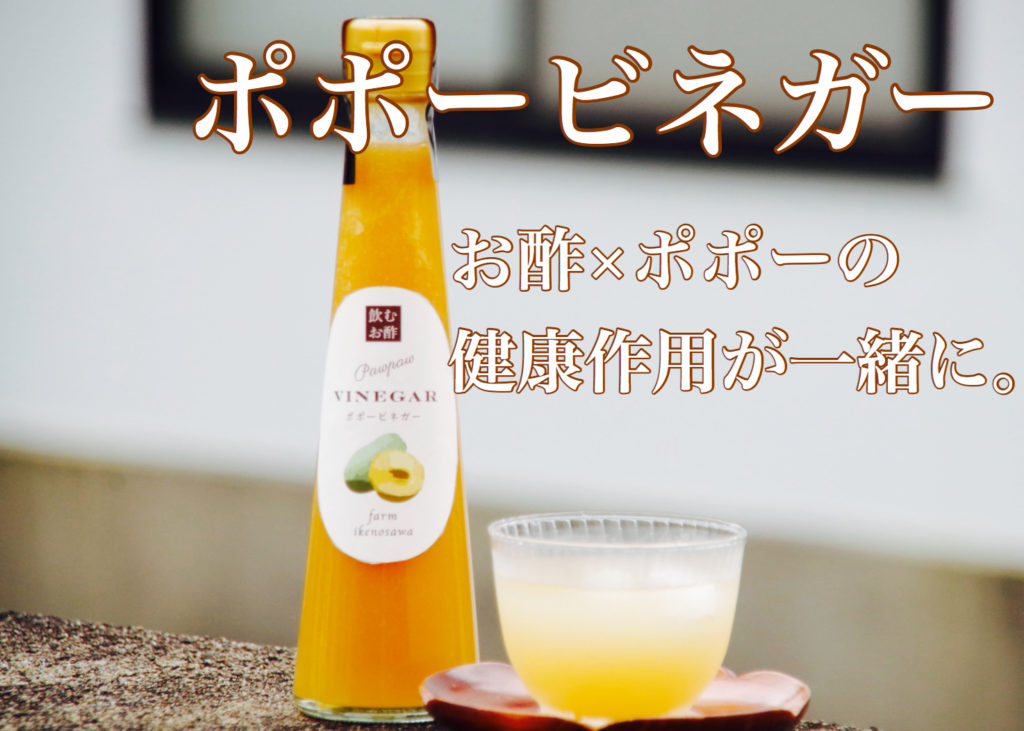 ポポー 酢 ビネガー